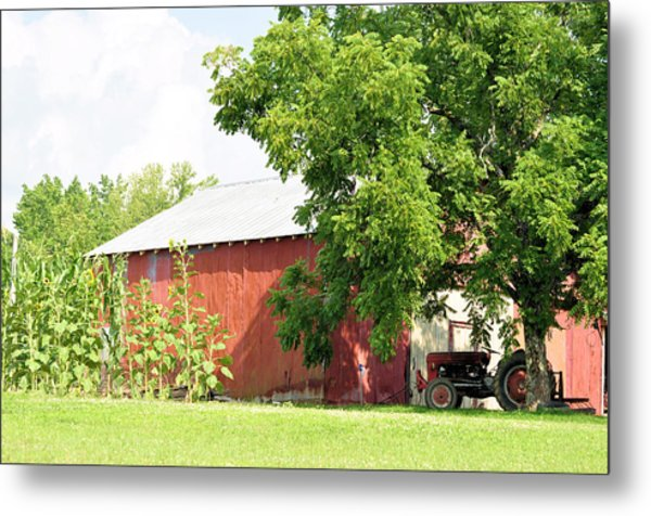 Country Life Metal Print by Jan Amiss Photography