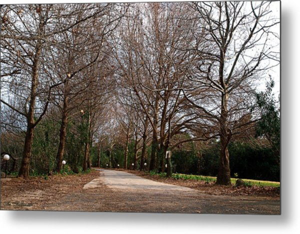Country Road Metal Print by Arik Baltinester
