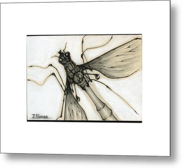 Crane Fly Metal Print by Jesse Alonzo