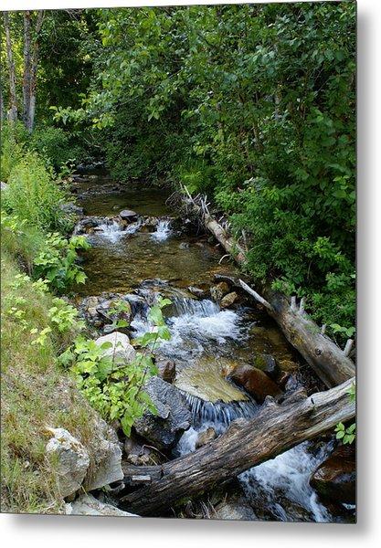 Metal Print featuring the photograph Creek On Mt. Spokane 1 by Ben Upham III