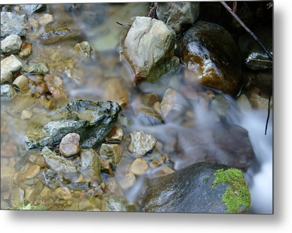 Creek On Mt Tamalpais Metal Print