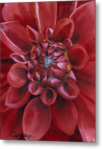 Dahlia Metal Print by Craig Gallaway