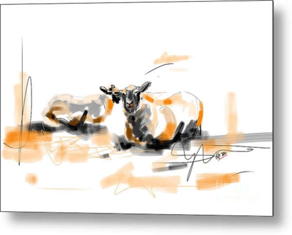 Danish Sheep Metal Print