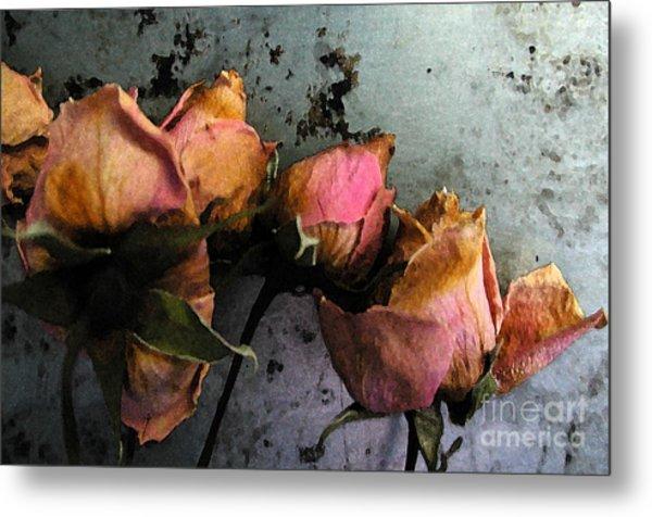Dead Roses 2 Metal Print