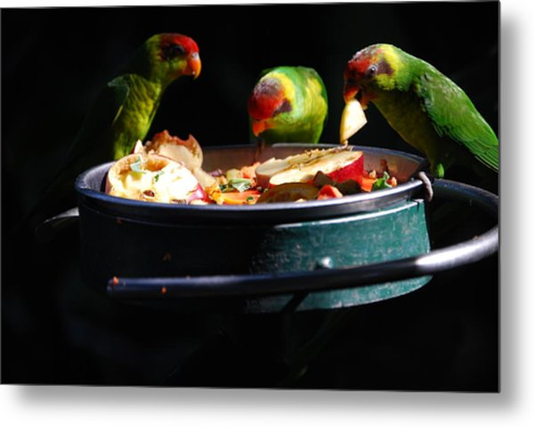 Delicacies Metal Print by Robert Boyette