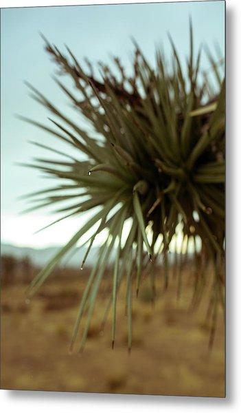 Desert Leaves Metal Print