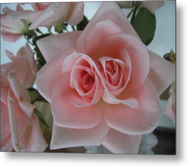 Double Vision Metal Print by Gregory Young