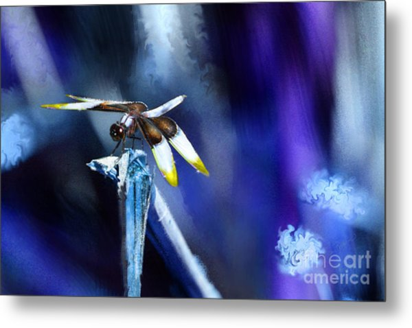 Dragonfly In The Blue Metal Print
