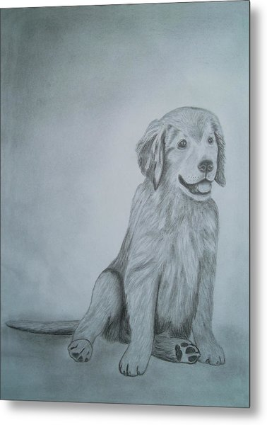 Drawings Portrait Artwork Of A Little Dog   Metal Print