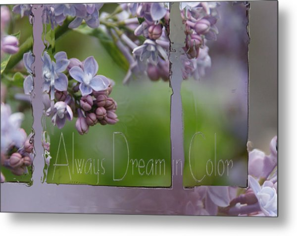 Dream In Color Metal Print by Tingy Wende