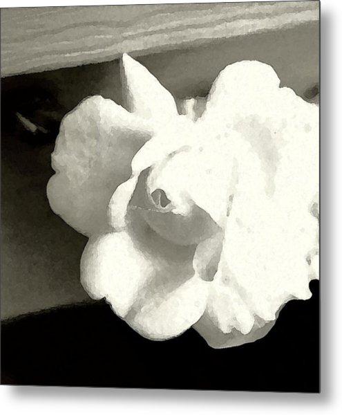 Dry Brushed Rose Metal Print by Emily Kelley