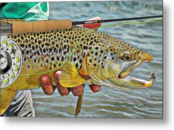 Dry Fly Brown Metal Print