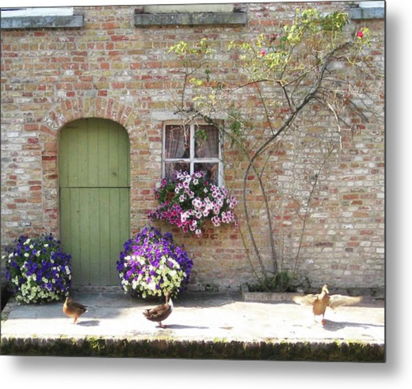 Ducks Along The Canal Metal Print by David L Griffin