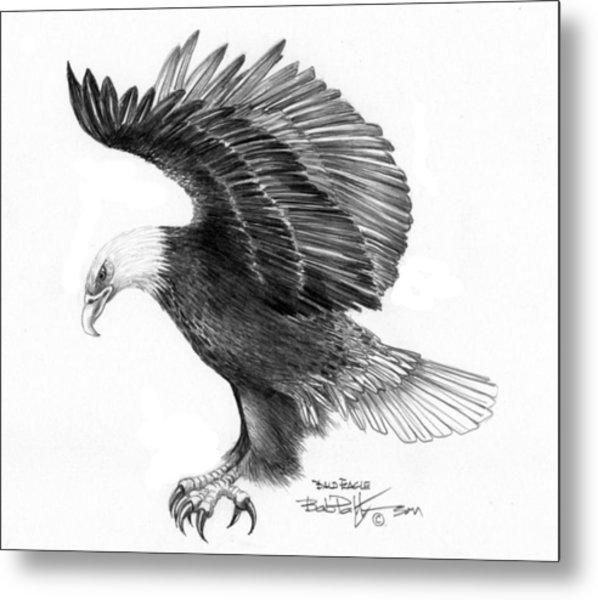 Eagle Attacking Metal Print by Bob Patterson