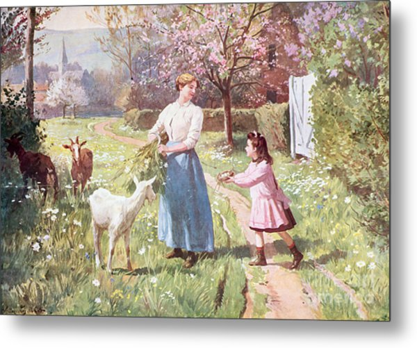 Easter Eggs In The Country Metal Print