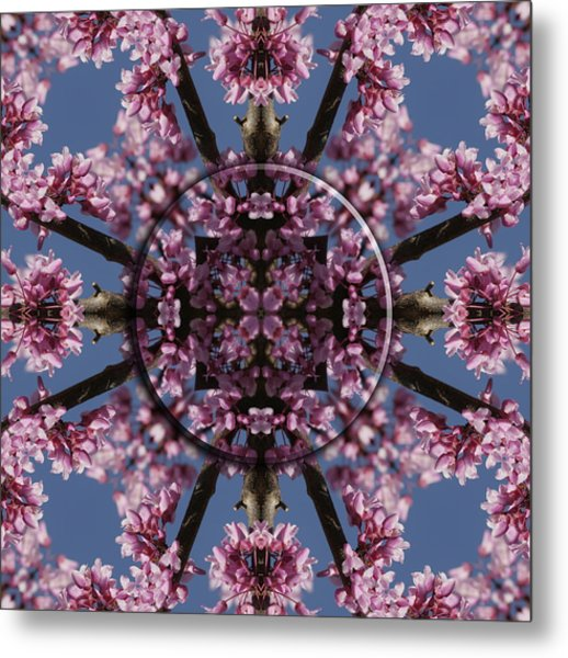 Eastern Red Bud Mandala Metal Print by Alan Skonieczny