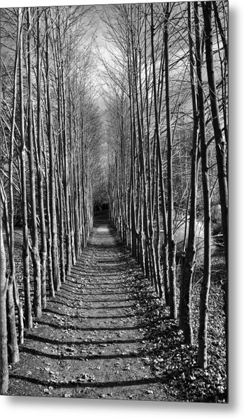 Everyone's Journey Is Individual Metal Print