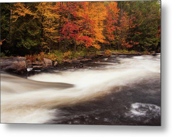 Fall At Oxtongue Rapids Metal Print