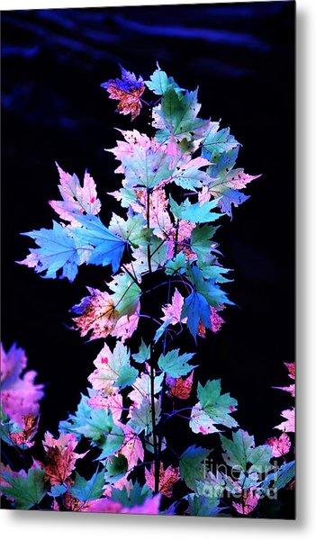 Fall Leaves1 Metal Print