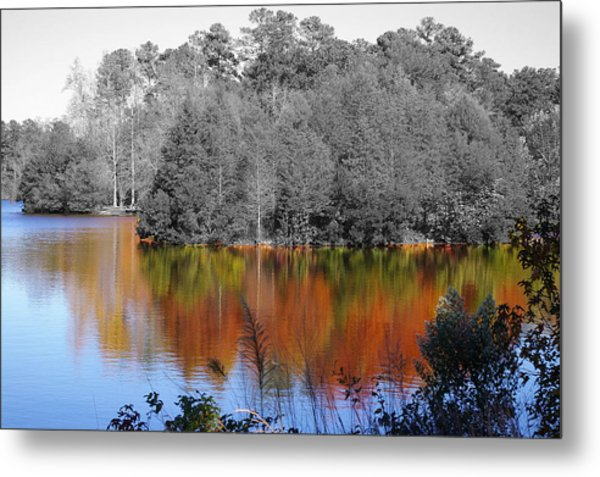 Fall Reflection Metal Print by Don Prioleau