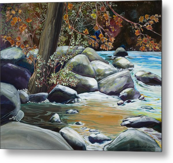 Fall Reflections Metal Print by Sharole Ewing
