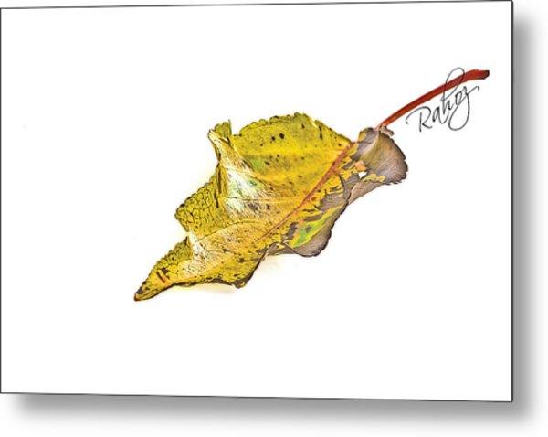 Fallen Leaf Metal Print by Rahat Iram
