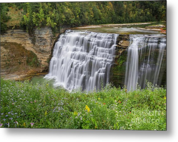 Autumn Flower Of Letchworth Middle Falls Metal Print