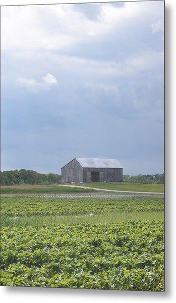 Farm House Metal Print by Tina McKay-Brown