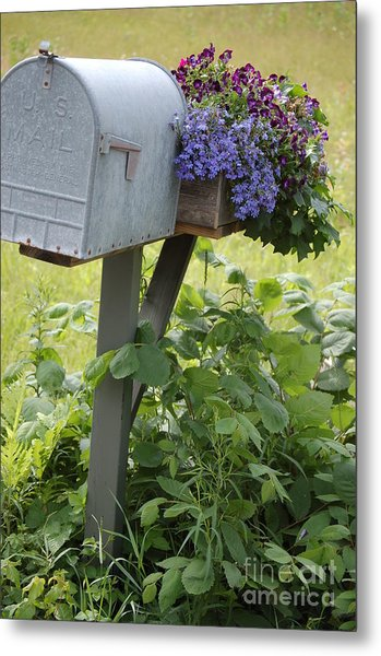 Farm's Mailbox Metal Print