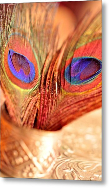 Feather Meets Sliver  Metal Print