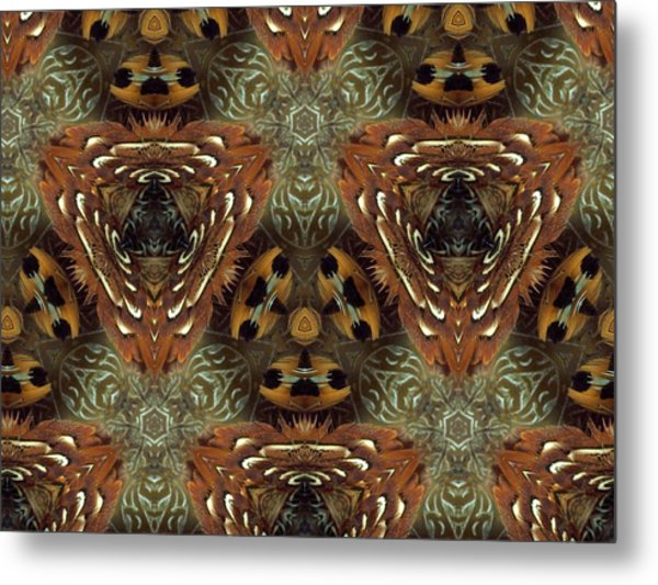 Feather Shield Metal Print by Ricky Kendall