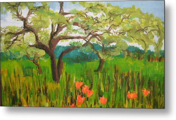 Field Of Red Poppies Metal Print by Mabel Moyano