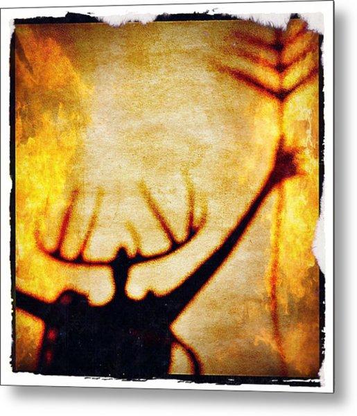 Fire Shaman Metal Print