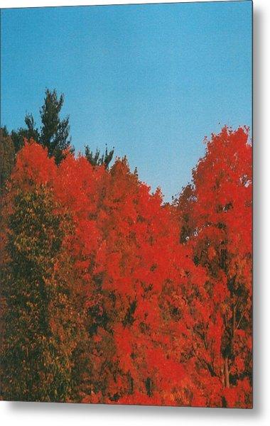 Firey Fall Metal Print