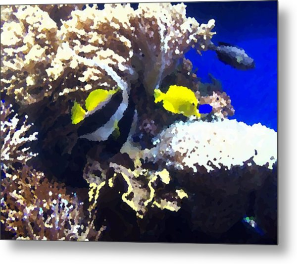 Fish Metal Print by Rodger Mansfield