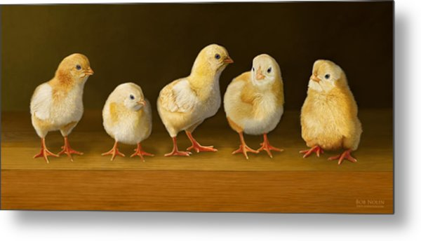 Five Chicks Named Moe Metal Print