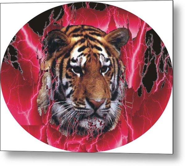 Flame Tiger Metal Print by Kathy Frankford