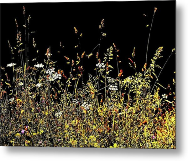 Metal Print featuring the photograph Flora Play II by HweeYen Ong