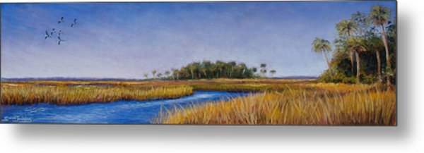 Florida Marsh In June Metal Print