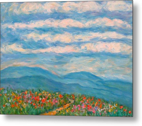 Flower Path To The Blue Ridge Metal Print