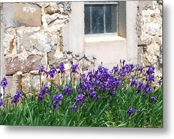 Flowers And Worn House Metal Print