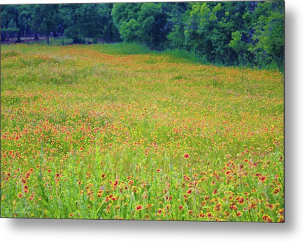 Flush With Flowers Metal Print