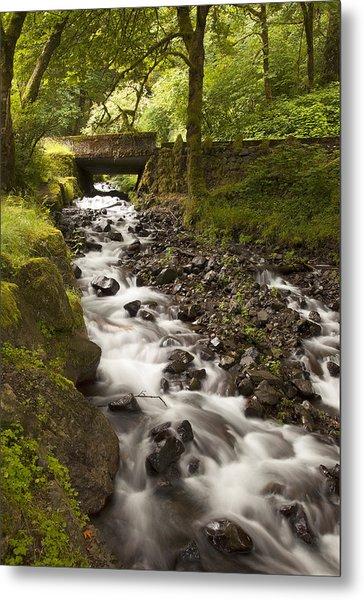 Forest Bridge - Columbia River Gorge Metal Print by John Gregg