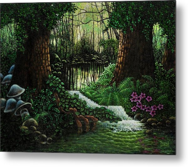 Forest Brook Metal Print