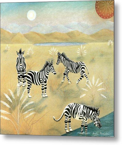 Four Zebras Metal Print by Sally Appleby