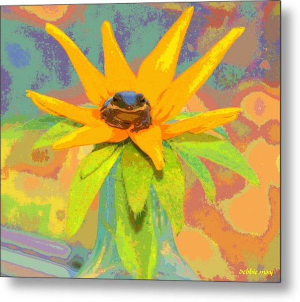 Frog A Lilly 2  - Photos Bydebbiemay Metal Print by Debbie May
