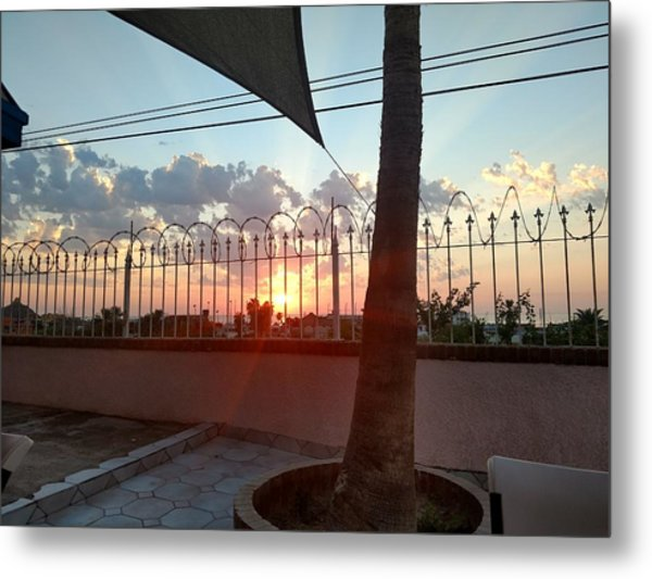 From The Patio Metal Print by Staci Black