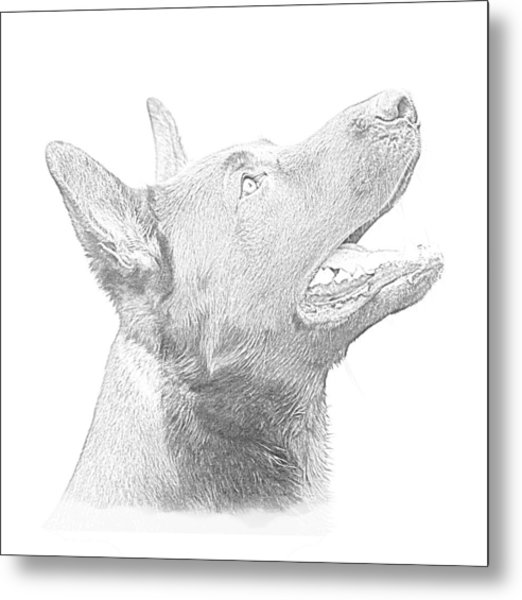 German Shepherd Profile Metal Print by Christean Ramage
