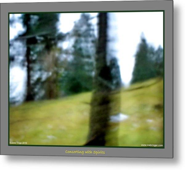 Ghost Behind Tree Metal Print by Jane Tripp