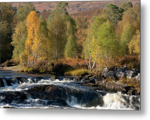 Glen Affric In Autumn Metal Print